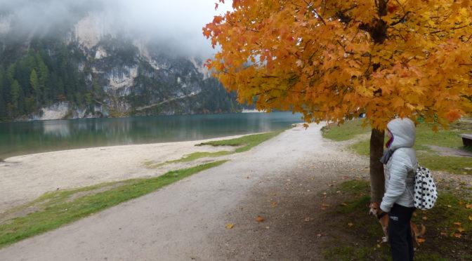 Itinerario Dolomiti: Val di Fassa e Lago di Braies