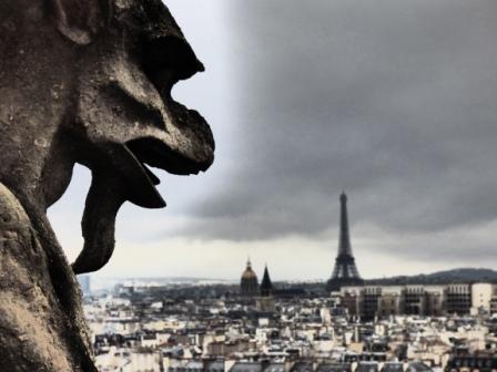 Parigi dall'alto di Notre Dame