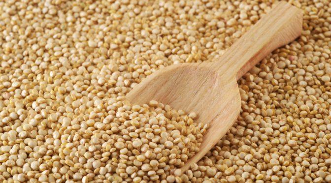 Insalata estiva mode on: la Quinoa