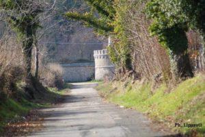 Lungo le mura della Certosa - Ph Liparoti