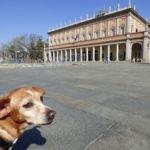 Un giorno a Reggio Emilia con il cane: cosa fare e cosa vedere