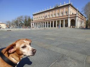 Reggio Emilia con il cane - Teatro Valli