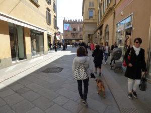 Via Emilia - reggio emilia con il cane