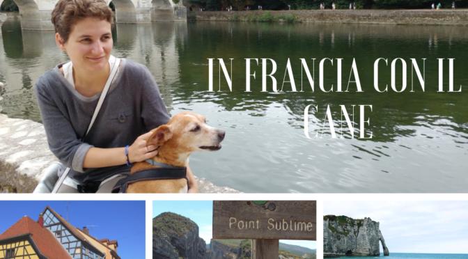 In Francia con il cane: itinerari e consigli di viaggio
