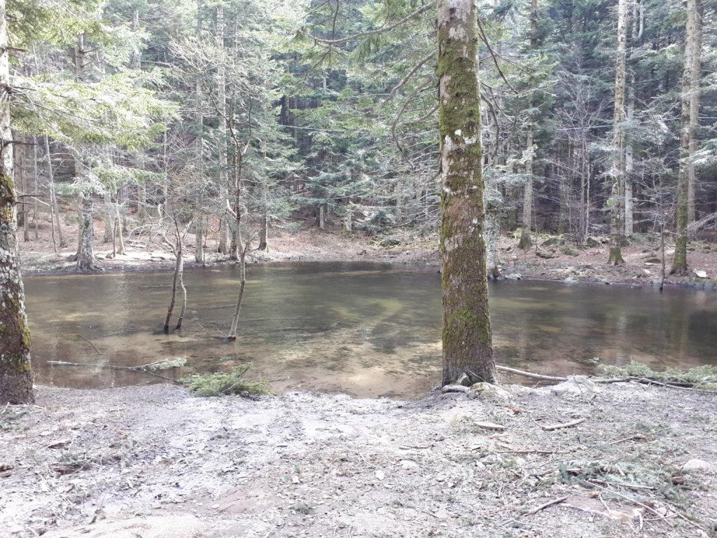 Parco dei 100 laghi - appennino tosco emiliano
