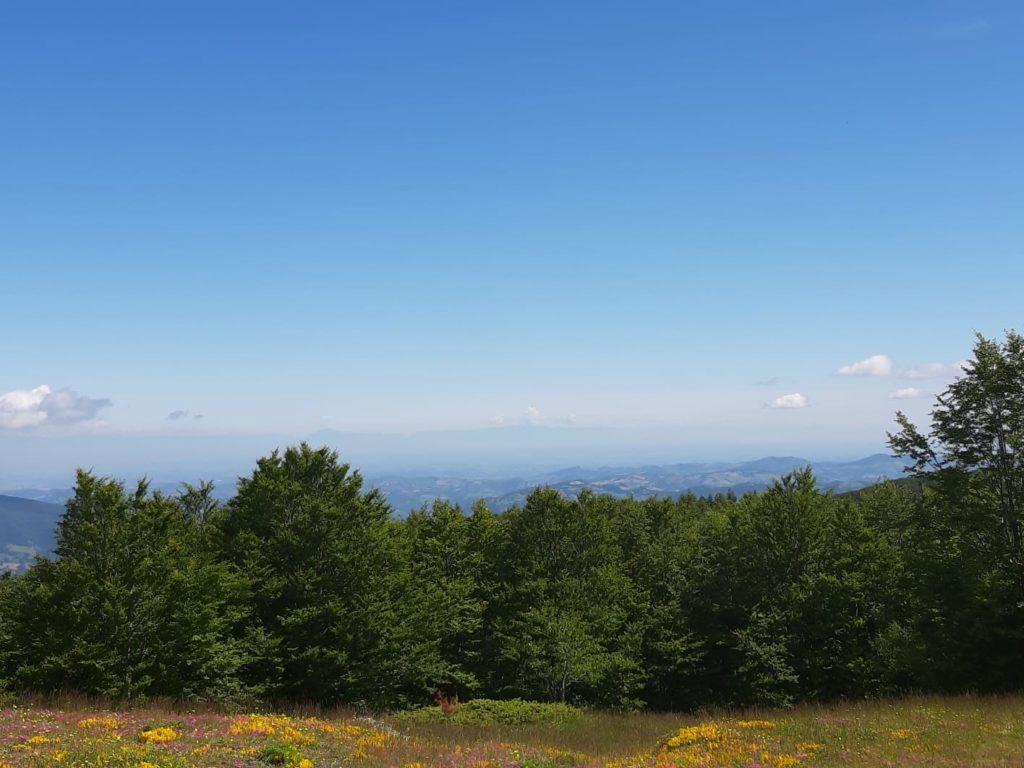 Panorama dal monte ventasso
